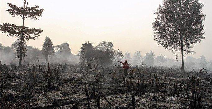 Endonezya'da ormanlar yandı, 'hava' alarmı verildi