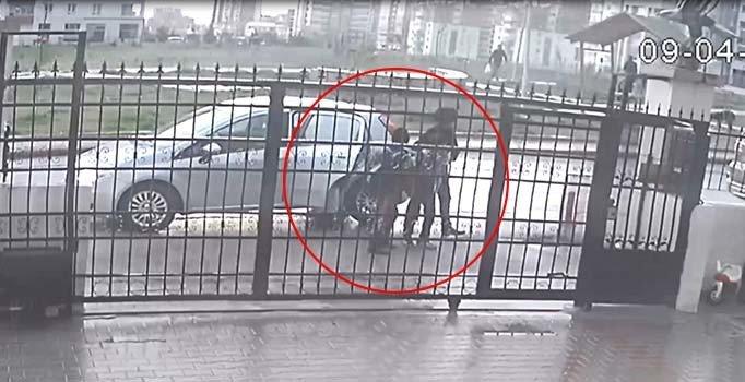 Ankara'daki 16 köpeğin zehirlenme görüntüleri ortaya çıktı