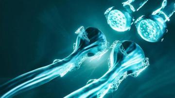 Alzheimer'da yeni hedef Kalsiyum kanalları
