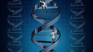 Duchenne Musküler'de umut veren gen tedavisi