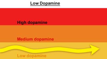 Dopamin Detoksuyla Hayata Bağlan